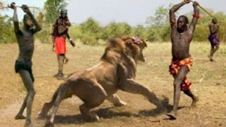 """让狮子最害怕的""""马赛人"""",到底有多厉害?看完瞬间就明白了!"""