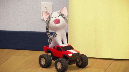 《甜甜私房猫》哇,好好玩哦,小奇真开心