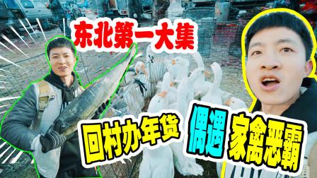 春节vlog:回村办年货寻年味 逛沈阳百年大集 山味野味太齐全了