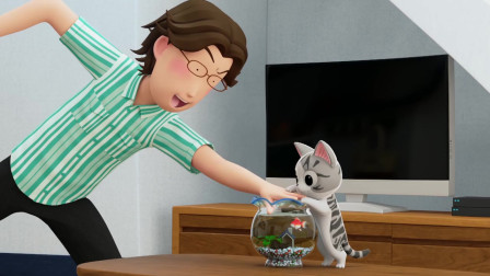 甜甜私房猫:小奇,你要听爸爸的话哦