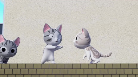 甜甜私房猫:噢,不要欺负小奇哦