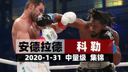 2020-1-31【中量级】安德拉德vs科勒  集锦