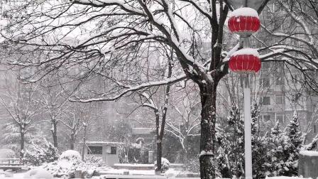 多年未见?北京大雪盈尺,满天繁星。国泰民安是最大的心愿。