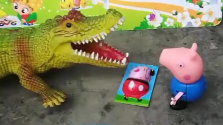 大鳄鱼吃了好多卡片,卡片上是佩奇一家人,你认识几个?