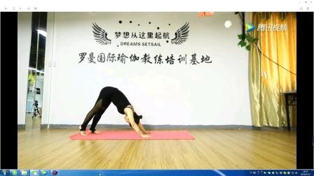 初级瑜伽教学1 下犬式和半月式