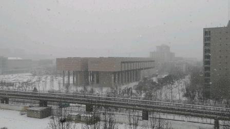 疫情期间北京的大雪