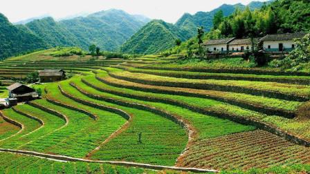 解决农村发展问题的办法之一是要把人引回来,再根据当地特色进行其他方面的发展