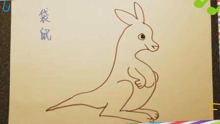 幼儿学画画简笔画-画袋鼠 教儿童零基础学绘画 小孩学画画入门美术教程 【乐成宝贝】