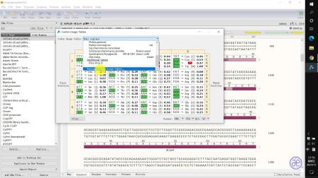【四方居士】SG#13质粒图谱软件Snapgene显示分子量及密码子表