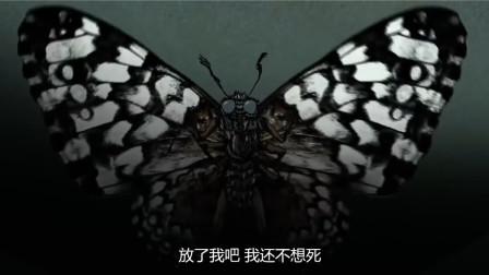 男孩捉了一只蝴蝶,不曾想却遭到了蝶仙的报复,吓出阴影的动画