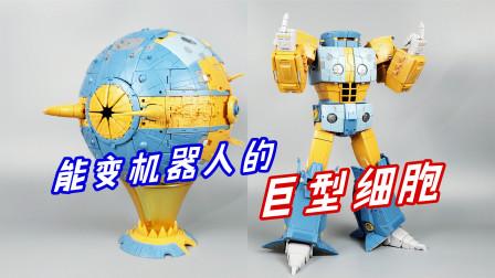 像篮球一样大的细胞模型,变成机器人后居然这么帅-刘哥模玩