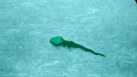 教你学习一款蜥蜴的折纸,方法很简单,你也能学会
