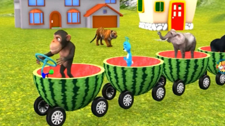 动物动漫 小猴子开着西瓜皮小火车接送各种野生动物