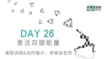 30天瑜伽练习 DAY 26:激活双腿能量——李晓波老师