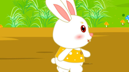 嘟拉动物故事 龟兔赛跑