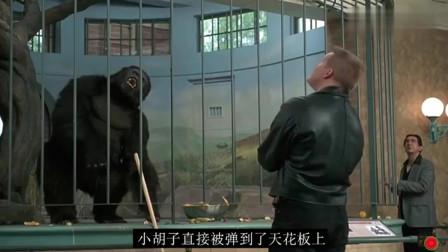 大猩猩救小孩,勇斗坏人的喜剧电影!
