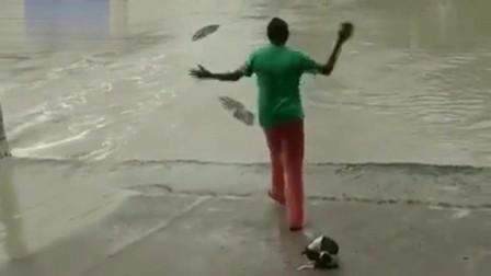 女子抡起手中的人字拖,鳄鱼竟然跑得比兔子还快。