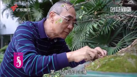 """拜见大师傅,广东首位粤语新闻男主播,成为""""粤语播音第一人""""!"""