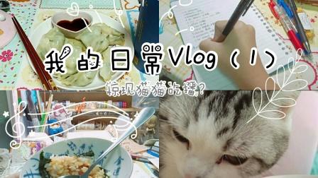 [LING]我的日常Vlog (1)
