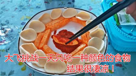 大飞挑战一天只吃一种颜色的食物,最后实在是没有忍住,失败了!