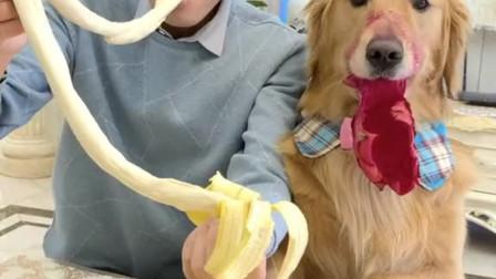 最后一个香蕉也被偷吃了!