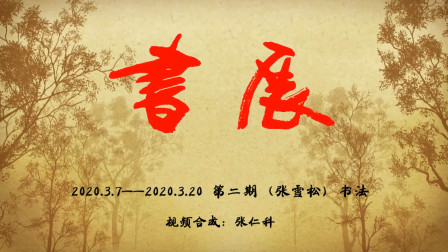 安徽省合肥市(张雪松)书法练习二集【视频合成张仁科】