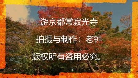 游日本京都常寂光寺