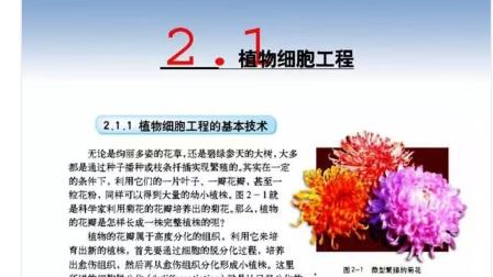 高中生物选修三专题2.1.1植物细胞工程的基本技术
