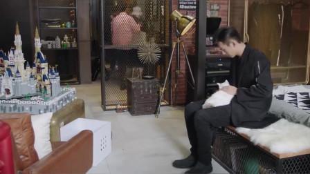 高冷韩商言对着猫咪傻笑,小队员们一脸不可思议