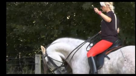 美女骑马108