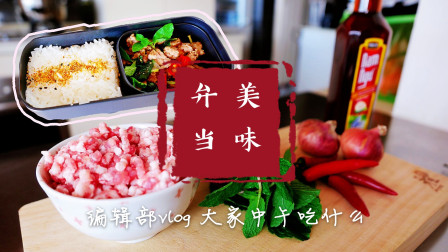 老挝美食薄荷炒肉末