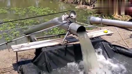 牛人发明:广西牛人发明的抽水机,结构这么简单小巧,抽水量还如此强悍!