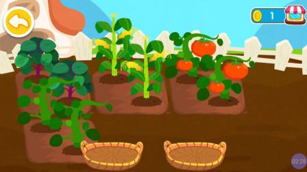 宝宝巴士之374 奇妙农场 育儿 亲子益智游戏 儿歌 宝宝巴士大全 少儿 早教