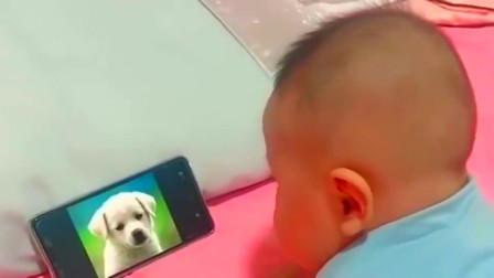 广西妈妈教儿子认识动物,孩子读到最后一个的时候,他的回答是亮点!
