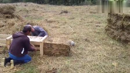 牛人发明:越南农村牛人自制牧草甘草方捆打捆机,自家使用超方便