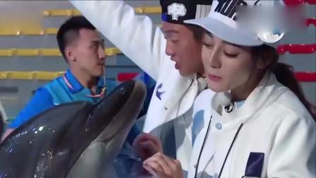 热巴和海豚互动,海豚不停地亲热巴脸,鹿晗直呼它怎么这么兴奋