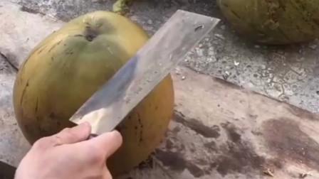 农村牛人三刀开椰子,这就是大自然赐予的美味,看着就让人流口水!