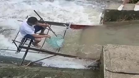 这地方真好,坐着就能抓鱼,谁来我都不换!