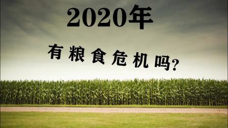 各国限制粮食出口,2020年粮食危机来了吗?