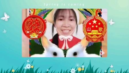 杨-胡的优酷云相册视频