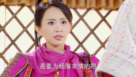 樊梨花和杨藩决战,哪料仙童替敌军求情,真是死性不改