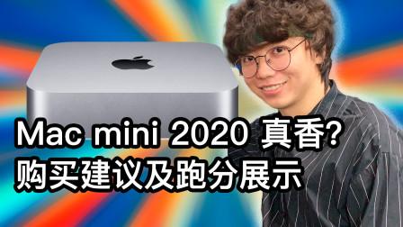 「评测」Mac mini 2020 超详细测评!(下)性价比最高的苹果电脑 综合购买建议与软件跑分数据