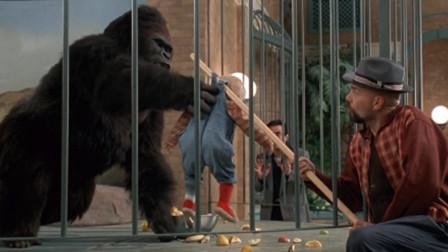 小男孩被3个劫匪绑架,机智爬进猩猩笼里,最后把劫匪揍惨了!