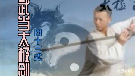 《太极南刚》)武当太极剑四十三式