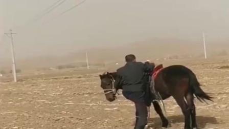在内蒙古草原上考驾照,都要经历的事情,一定要记得拉手刹!网友:心里没点数都不敢去