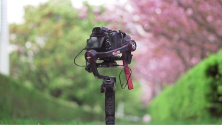 智云WEEBILL-S稳定器 ︳拍摄春天的几个瞬间