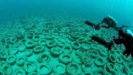 美国人作死实验!将200万个轮胎放海里,40年后肠子都悔青了