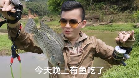 抓鱼的方法有很多,但您肯定没有这么刺激的,那么远也能拿下