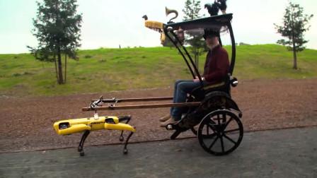 这只机械狗可以干活了,拉车小能手,力气还不小