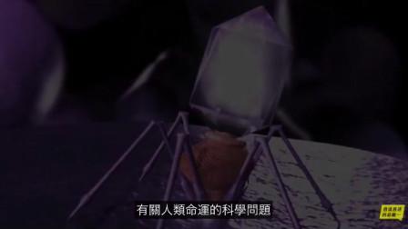 纳米机器人——噬菌体